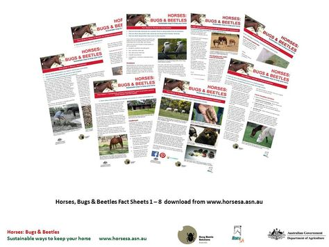 The Horses Bugs \ Beetles project has produced eight fact sheets - sample fact sheets