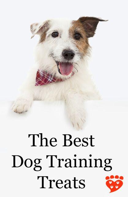 The Best Dog Training Treats Dog Training Treats Best Dog