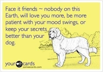 Rescuedog Dog Itsarescuedoglife Dog Quotes I Love Dogs Dogs