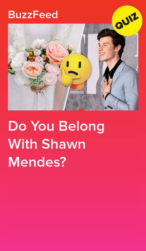 Do You Belong With Shawn Mendes?