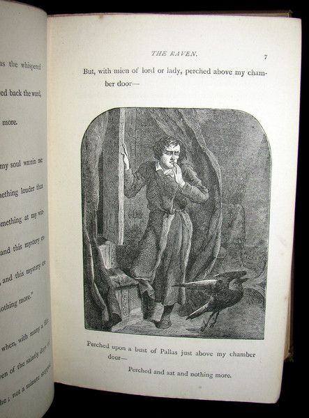 1890 Rare Illustrated book - The Poetical Works of Edgar Allan Poe