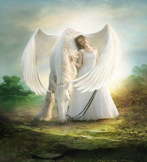 Pegasus by ElenaDudina on DeviantArt