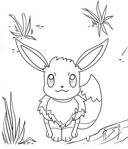 Simple Eevee Coloring Page Of Pokemon Coloring Pages Eevee Pokemon