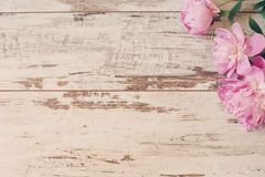 Stunning Pink Peonies On White Light Rustic Wooden Background Copy Space Floral Frame Vintage Haze Looking Wedding Pink Peonies Wedding Car Vintage Frames