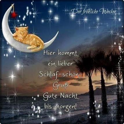 """Auf guten türkisch nacht """"Guten Nacht"""""""