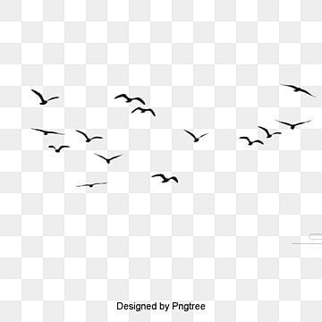 Birds Png Flying Bird Silhouette Bird Silhouette Paint Vector