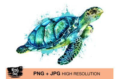 Turtle Watercolor On All Category Thehungryjpeg Com Turtle Watercolor Turtle Sea Turtle