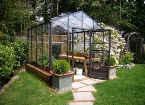 the best backyard greenhouses that you can assemble all by yourself rh in pinterest com