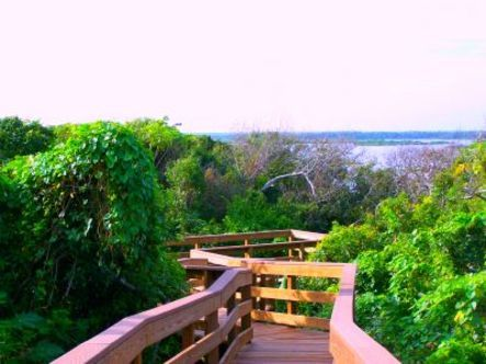 Turtle Mound, New Smyrna Beach, Florida