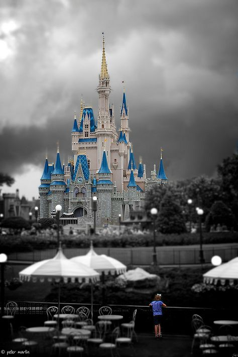 °O° ... VERY sweet portrayal of Cinderella's castle. The little girl at the bottom is precious :)