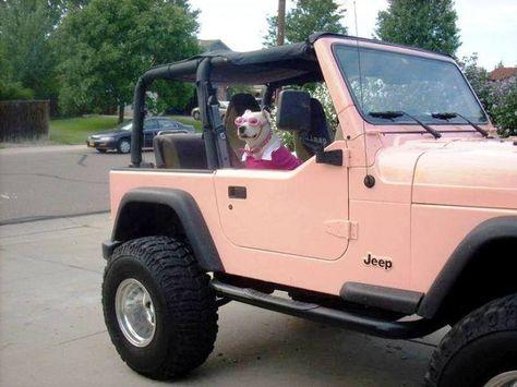 30 best jeep s images jeep truck jeep wrangler jeep wranglers rh pinterest com