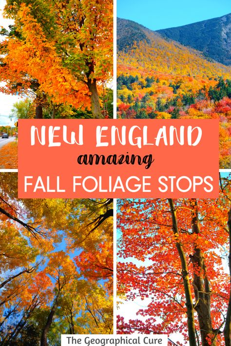 Experience Fall Foliage in new England