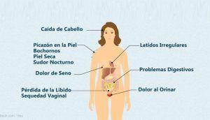 Causas de aumento de peso durante la menopausia
