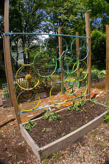 Bike wheels trellis - for all sorts of climers and ramblers around your house