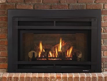 Pin By Mary Jo Shields On Lounge In 2020 Gas Fireplace Insert