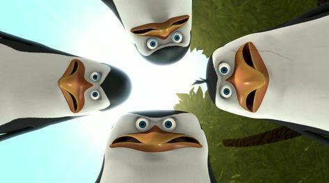450 Ideas De Fondos Pinguinos De Madagascar Ideas De Fondos De Pantalla Iphone Fondos De Pantalla