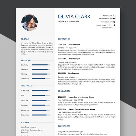 An Example Of A Resume For A Job Best Resume Templates Bio Data Sample For Job Biodata Sample For Job Application Biodata Best Resume Template Bio Data Resume