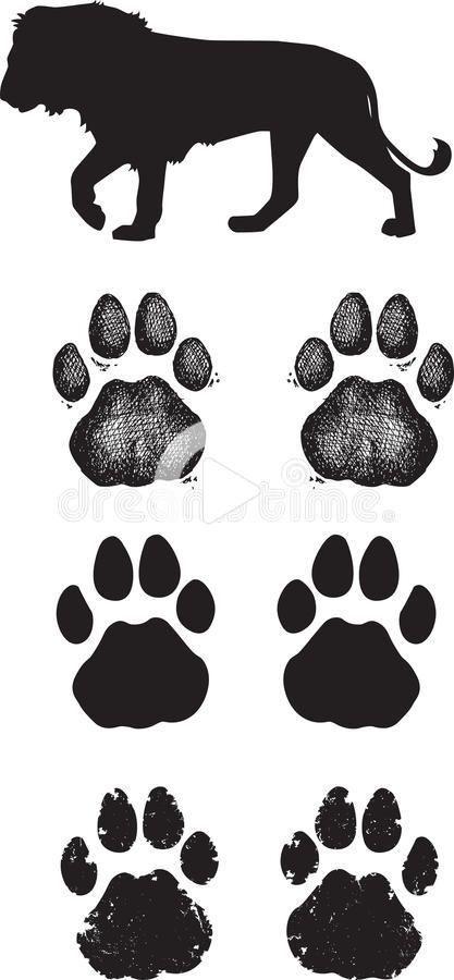 Lion Paw Print Clip Art : print, Dragon, Drawing, Tattoo