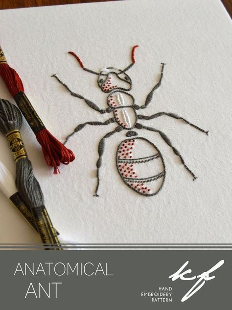 (10) Name: 'Embroidery : Anatomical Ant