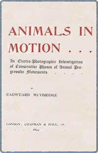 Muybridge, Animals in Motion, 1899