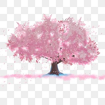 Cherry Blossom Tree Full Of Flowers Cherry Blossom Clipart Bright Cherry Blossom Png Transparent Clipart Image And Psd File For Free Download Anime Flower Flower Backgrounds Cherry Blossom Tree