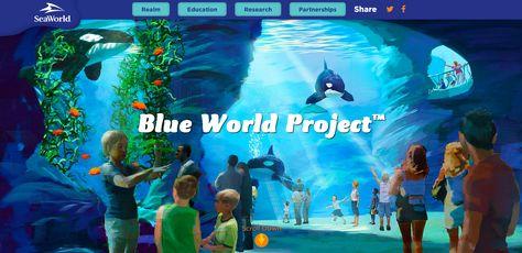 29 Sea World Attractions Ideas Sea World Seaworld Orlando Orlando