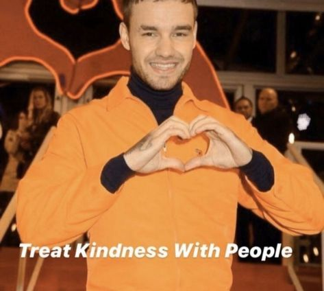 One Direction Interviews, One Direction Cartoons, One Direction Videos, One Direction Quotes, One Direction Imagines, 1d Imagines, One Direction Harry, Liam Payne, Stupid Memes
