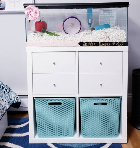 How to keep your pet's food | supplies organized? 🐹  The #Kallax storage unit @IkeaUSA is perfect because it can be customized to fit your space. You can add drawers, doors, and storage bins. 🗄  The #YWeaveBaskets @Target are available in assorted colors and they are very study. 🎁 ☆ These baskets can be in closets, pantries, playrooms, offices, etc. ☆ . . . . . . . . . . #Organizing #Staging #InstaInterior #InteriorDesign #Storage #StorageUnit #Ikea #Kallax #Cubby #Target #YWeave #Baskets  #R