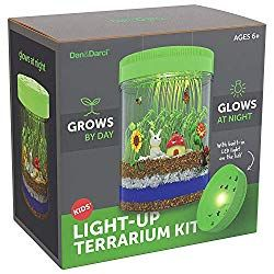 Kids Science Learning Craft Project NEW Create Your Own Dinosaur Terrarium Kit