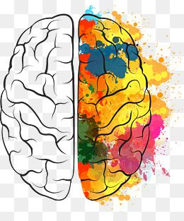 Painted The Brain Png Free Download Brain Painting Brain Png Brain Vector