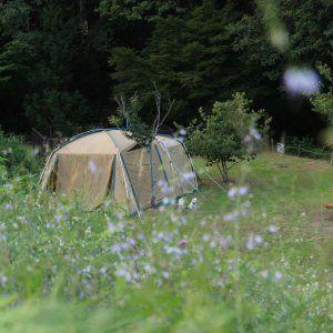 ペットok ファミキャン 犬キャン ママキャンプ キャンプ アウトドア キャンプ用品 収納