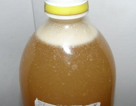 米のとぎ汁乳酸菌 虫さされに効く エコは楽しい グレープおばさん