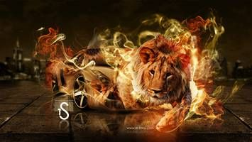 Download The Car Creative Fire Lion Best Hd Wallpapers Widescreen