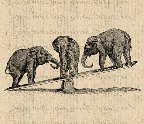 Circus Elephants Png Jpg Animals Digital Collage Sheet Image Etsy Circus Elephant Digital Collage Sheets Digital Collage