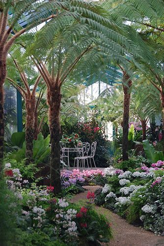 Dieser Kleine Tropische Grunanlage Royal Greenhouses Of Laken Hauptstadt Von Belgien Botanischer Garten Tropische Garten Gartendesign Ideen