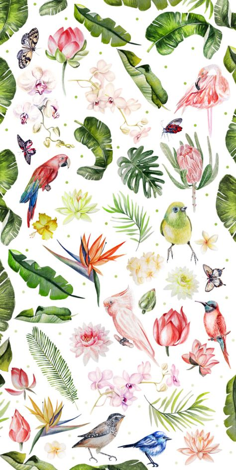 A wonderful collection of beautiful tropical birds, flowers and leaves watercolor for your design. Parrots, flamingo, flowers of lotus and...