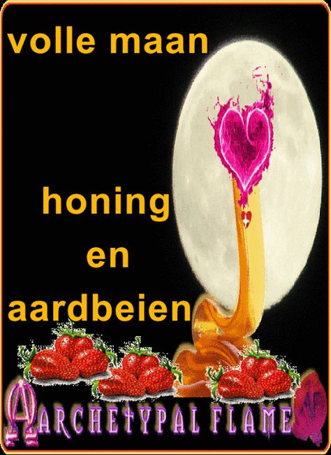 29 Best Archetypal Flame Dutch Nederlands Images Love And