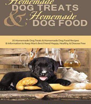 Homemade Dog Treats And Homemade Dog Food Pdf Homemade Dog Food