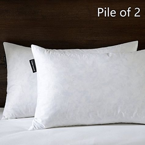 BASIC HOME 40X40 Oblong Feather Down Pillow Insert 40 Cotton Fabric Extraordinary 100 Down Pillow Inserts