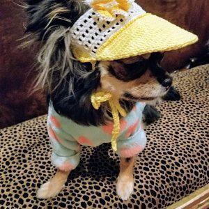 Hat For Dog Sakura Blossoms Crochet Dog Hat Dog Beanie Dog Party Hats Dog Sun Hat Puppy Hat Caps For Dogs Dog Hat Puppy Hats Dog Beanie
