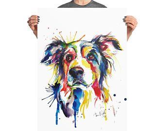 Kleine Hunde Kaufen Kleine Hunde Bei Dhd24 Com