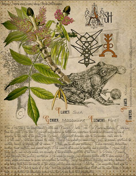Book of Shadows page. Sorry, This page is only available to my customers for free, I don't sell it in the Etsy Green Witchcraft, Pagan Witchcraft, Magick Spells, Magic Herbs, Herbal Magic, Wiccan Spell Book, Witch Spell, Wiccan Magic, Grimoire Book
