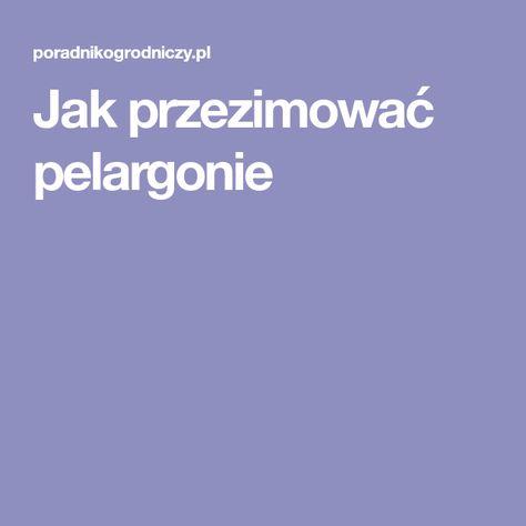Jak Przezimowac Pelargonie Lockscreen Lockscreen Screenshot