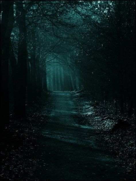 Image Result For Nighttime Gothic Garden Landscapes Gothic Photography Nature Photography Dark Forest