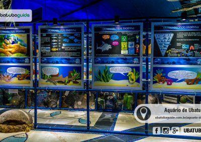 Aquario De Ubatuba Horario De Funcionamento Valores Especies