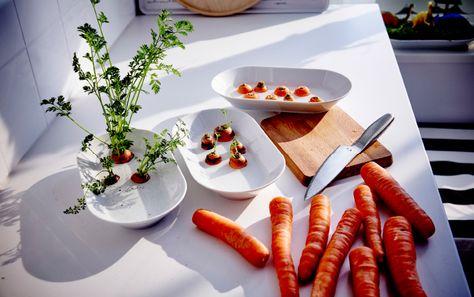 Pastinaken- und Karottengrün lässt sich auf dieselbe Weise neu ziehen, wie hier auf IKEA 365+ Servierplatte in Weiß