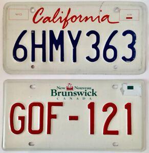 TammieLove Plaque dimmatriculation Californie Style Art Tout Texte Personnalis/é Noveltycar Plaque dimmatriculation 15 x 30 cm