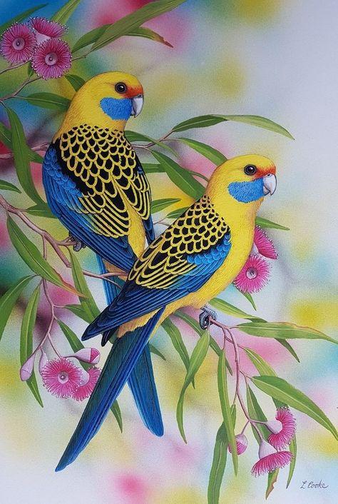 """""""Yellow Rosellas"""" de Lyn Cooke. Peintures à vendre. Bluethumb - Galerie d'art en ligne ... - #à #Bluethumb #Cooke #d39art #de #en #Galerie #ligne #Lyn #peintures #quotYellow #Rosellasquot #vendre"""
