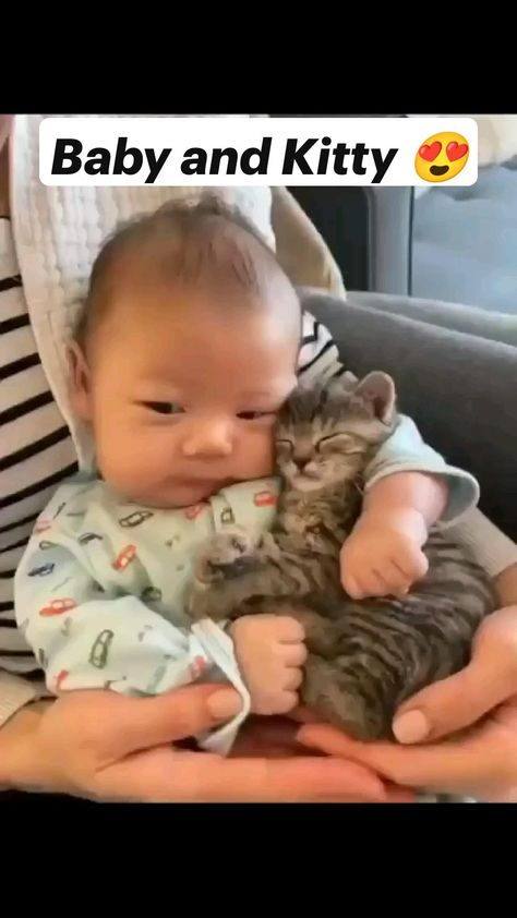 Baby and Kitty �   beautiful kitten video