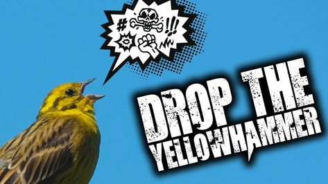 #Brexit - The Yellowhammer Document Drops